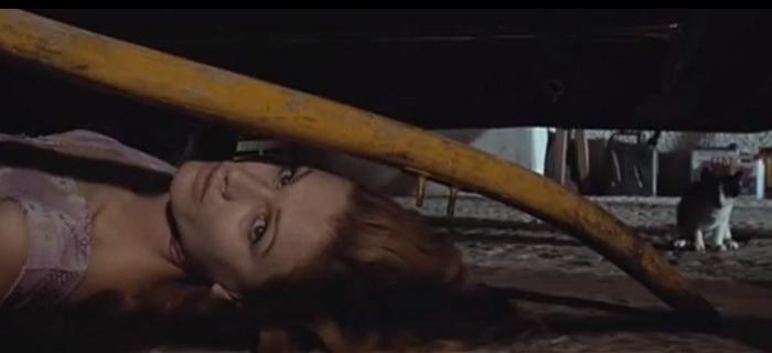 Il coltello di ghiaccio (1972) (3)