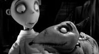 Animação divertida com grandes referências aos clássicos da produtora Universal, especialmente Frankenstein e A Noiva de Frankenstein!