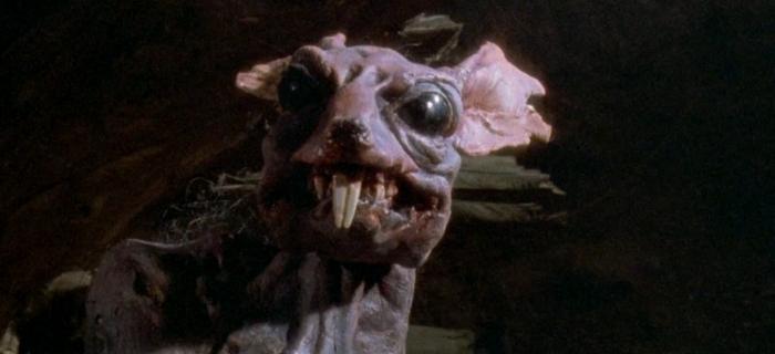 Fome Animal (1992)