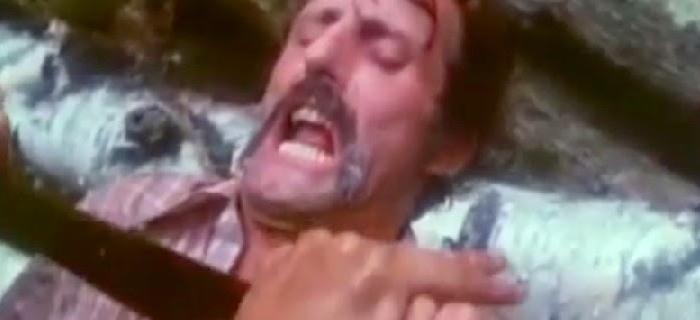 A Hora do Calafrio (1979) (6)