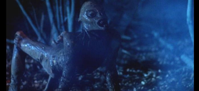 Estranhas Metamorfoses (1982)