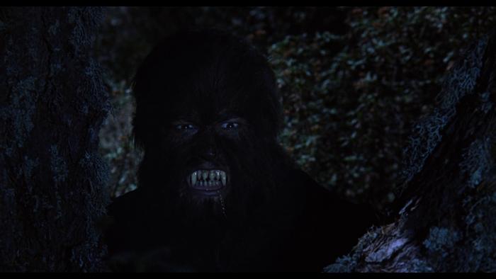 La Noche de Walpurgis (1971) (5)