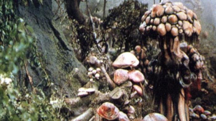 Matango (1963) (2)