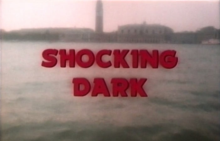 Shocking Dark (1990) (7)