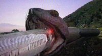 """Para o bem ou para o mal, Snakes on a Train cumpriu seu objetivo: ficou pronto e foi para as locadoras americanas antes do """"original"""""""