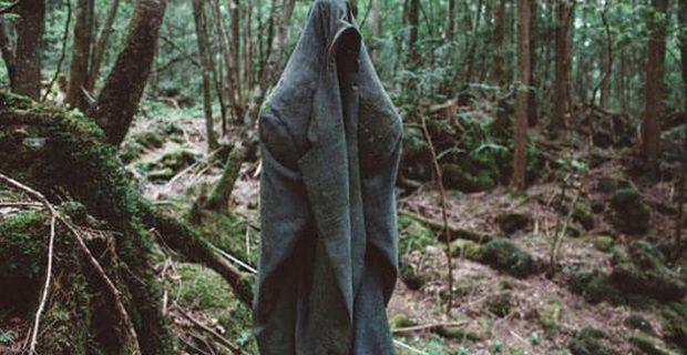 """O que é verdade e as lendas que se escondem nas profundezas do """"mar de árvores""""!"""