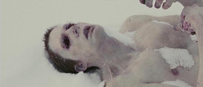 Colapso no Ártico (2006)