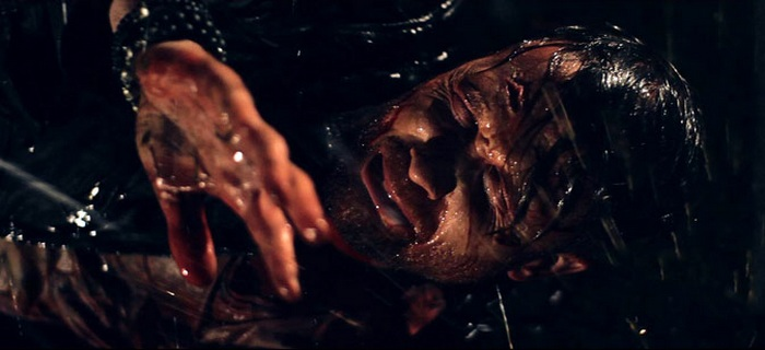 Wither (2012) (2)