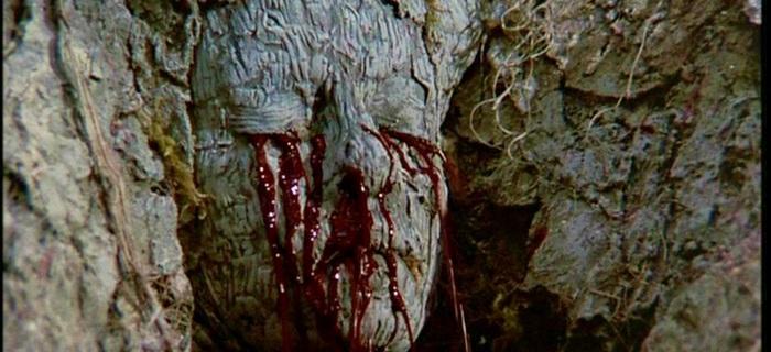 A Árvore da Maldição (1990)