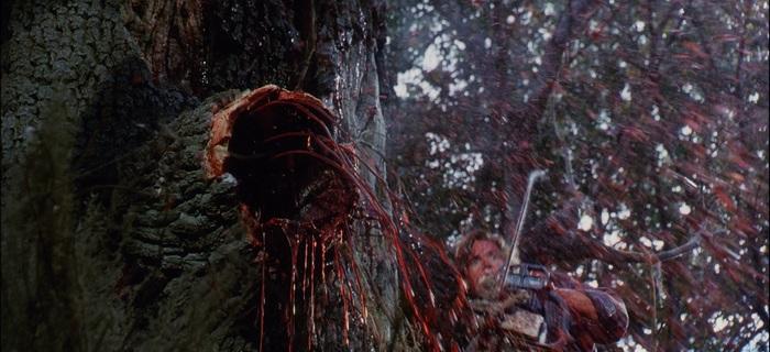 A Árvore da Maldição (1990) (6)