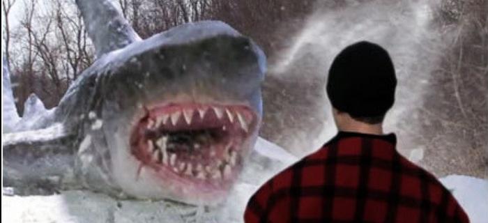Avalanche de Tubarões (2014) (1)