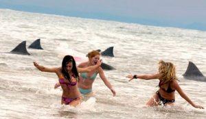 Tubarão de Malibu (2009) (3)