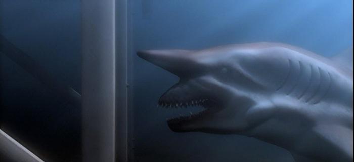 Tubarão de Malibu (2009)