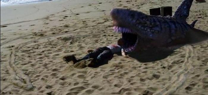 Tubarões da Areia (2012) (2)