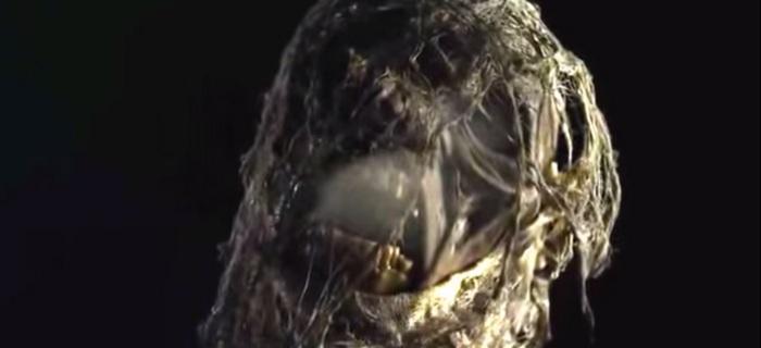 The Mummy Resurrected (2014) (4)