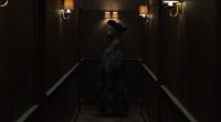 Vídeo mostra os bonecos que estrelavam o misterioso programa infantil Welcome to Candle Cove