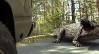 Outra porcaria colossal de uma franquia desnecessária de crocodilos gigantes