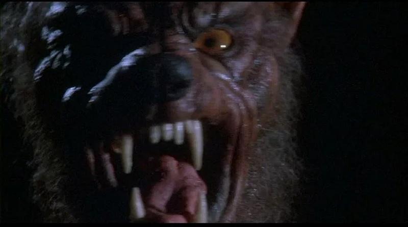 Grito de Horror 5: O Renascimento (1989)