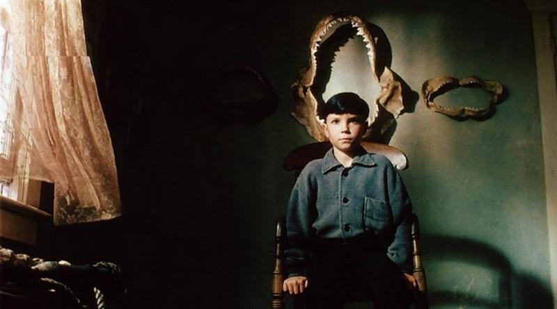 O Reflexo do Mal (1990)