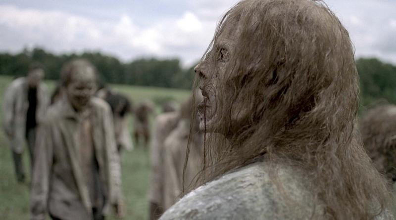 The Walking Dead: 9ª Temporada (2018/2019) (8 episódios)