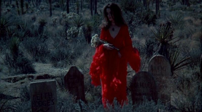 A Vampira de Veludo (1971)
