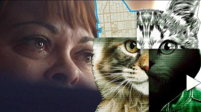 Don't Fuck with Cats: Uma Caçada Online (2019)